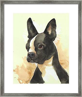 Bright Boston Terrier Framed Print by Tracie Thompson