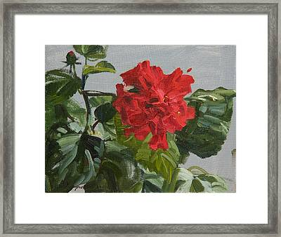 Bright Flower Framed Print by Victoria Kharchenko