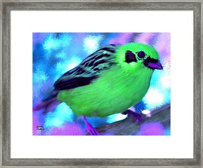 Bright Green Finch Framed Print by Bruce Nutting