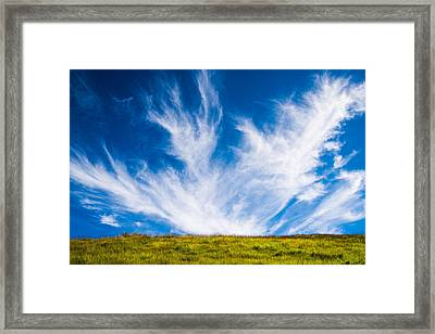 Bright Green Meadow And Deep Blue Sky Framed Print by Matthias Hauser