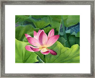 Bright Pink Lotus Blossom Framed Print by Sharon Freeman