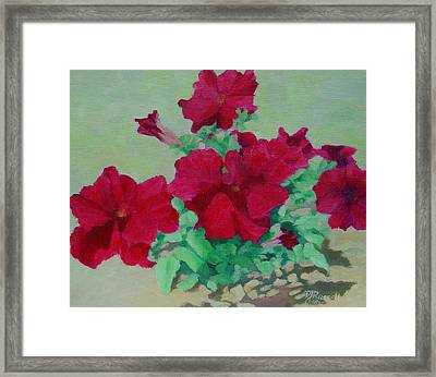 Red Flowers Art Brilliant Petunias Bright Floral  Framed Print