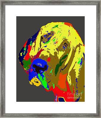 Bright Sad Sack Framed Print by Skip Willits