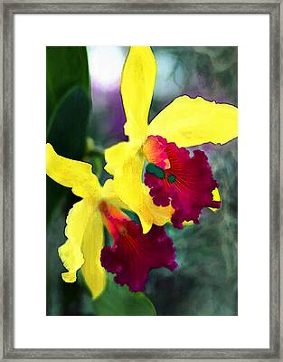 Bright Spot In The Jungle Framed Print by Elaine Plesser