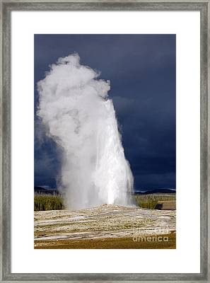 Bright Steam Plume Set Against A Darkening Sky From Old Faithful Geyser In Yellowstone National Park Framed Print