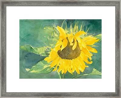 Bright Sunflower Framed Print