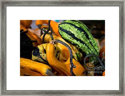 Bright Veggies Framed Print