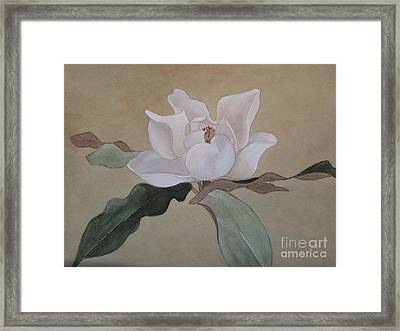 Bright White Framed Print by Nancy Kane Chapman