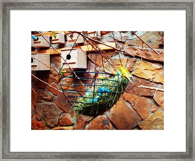 Bright Wings Framed Print