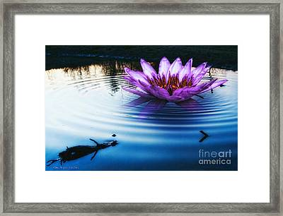 Brighter Than Stars Framed Print by Mo T