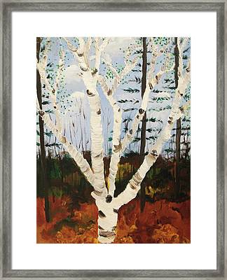 Brightest Birch Framed Print by Suzanne  Marie Leclair