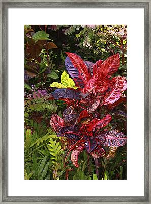 Brilliant Colors Of Leaves Framed Print