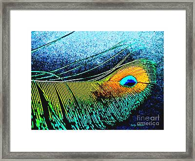 Brilliant Feather  Framed Print