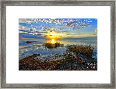 Brilliant Pamlico Sound Sunset On Outer Banks Framed Print by Dan Carmichael