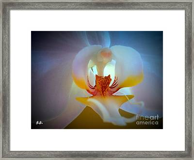 Brilliant Performance Framed Print