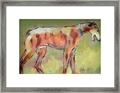 Brindle Greyhound Framed Print by Carol Jo Smidt