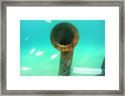 Brine Discharge Pipe Framed Print