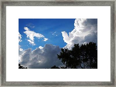 Framed Print featuring the photograph Bring It On by Deborah Fay