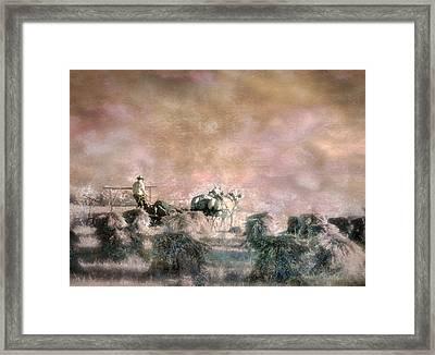 Bringing In The Sheaves II Framed Print