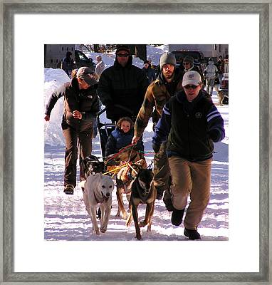 Bringing The Sled Up To The Line Framed Print by Feva  Fotos