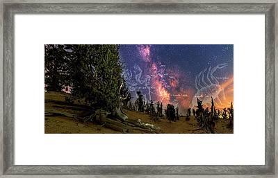 Bristlecone Forest And The Milky Way Framed Print