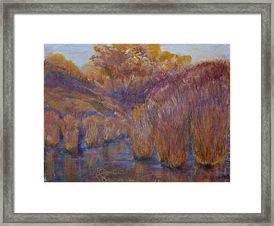 Bristling Rushes Framed Print by Helen Campbell