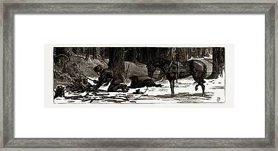 British Columbia, A Province Located On The West Coast Framed Print