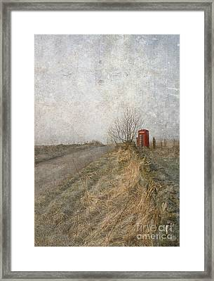 British Phone Box Framed Print by Liz  Alderdice
