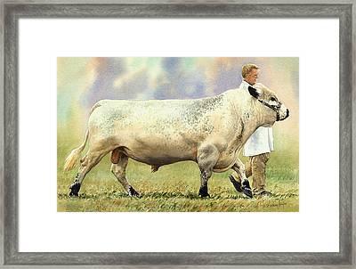 British White Bull Framed Print by Anthony Forster