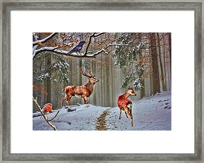 British Woodland Animals Framed Print by Sharon Lisa Clarke