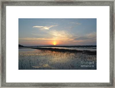 Framed Print featuring the photograph Broad Creek Sunset II by Carol  Bradley