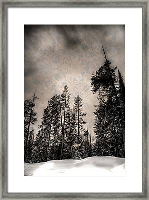 Brocade Sky Framed Print
