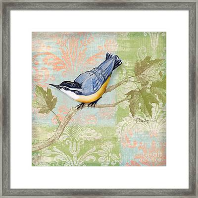 Brocade Songbird IIi Framed Print by Paul Brent