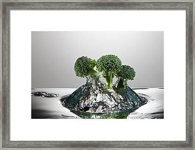 Broccoli Freshsplash Framed Print