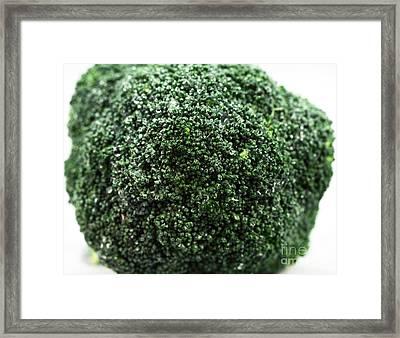Broccoli Framed Print by John Rizzuto