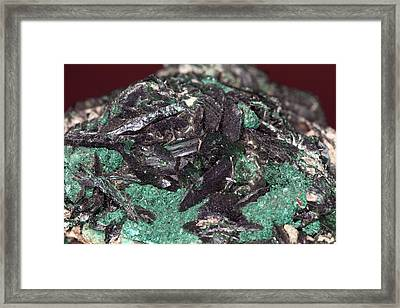Brochantite Crystals Framed Print by Science Photo Library