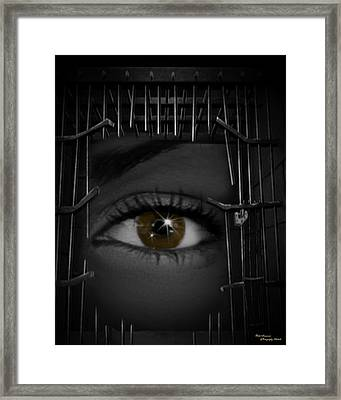 Broken Bonds Framed Print