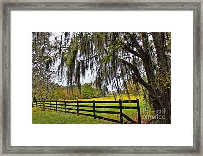 Broken Fences Framed Print by Leslie Kirk