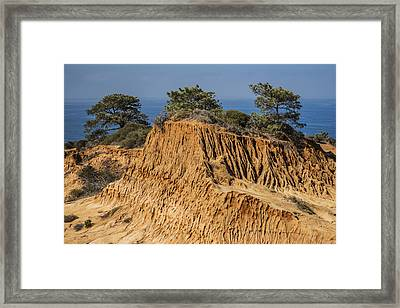 Framed Print featuring the photograph Broken Hill At Torrey Pines by Lee Kirchhevel