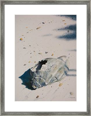 Broken Home Abandoned Framed Print