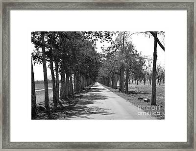 Broken Road Framed Print