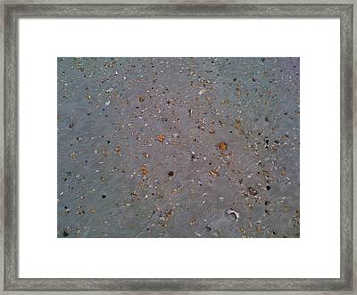 Broken Shells Framed Print by Julie Wilcox