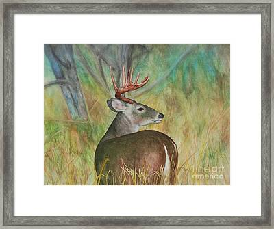 Broken Silence - Watercolor Framed Print