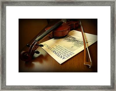 Framed Print featuring the photograph Broken String by Lucinda Walter