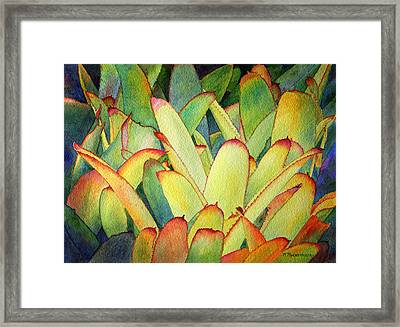 Framed Print featuring the painting Bromeliads I by Roger Rockefeller
