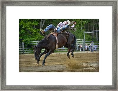 Bronco Cowboy Framed Print