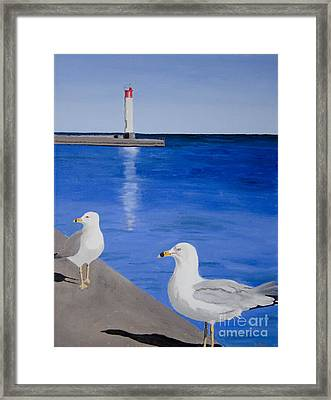 Bronte Lighthouse Gulls In Oil Framed Print