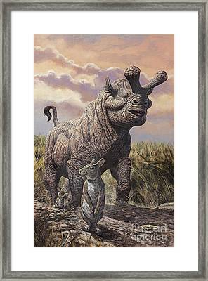 Brontops And Palaeolagus Rabbit Framed Print