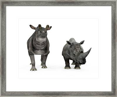 Brontotherium And Rhino Compared Framed Print by Walter Myers