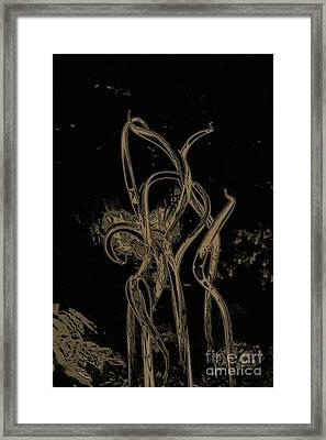 Bronze Rainforest  Framed Print